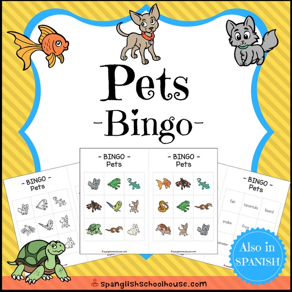 Pets Bingo in English