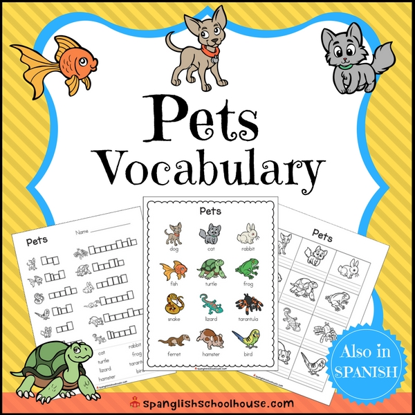 Pets Vocabulary in English