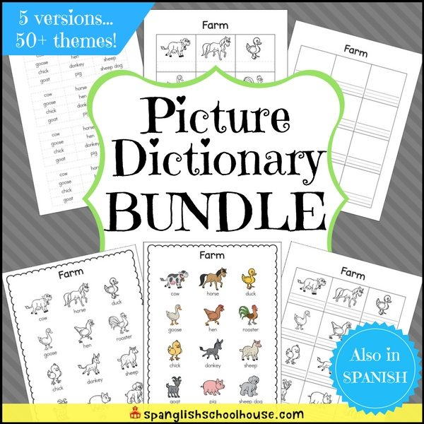 Picture Dictionary Bundle Square