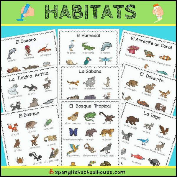 Habitat Picture Dictionary in Spanish