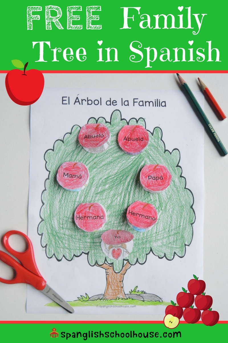 Making a family tree in Spanish is a great way to reinforce family vocabulary!