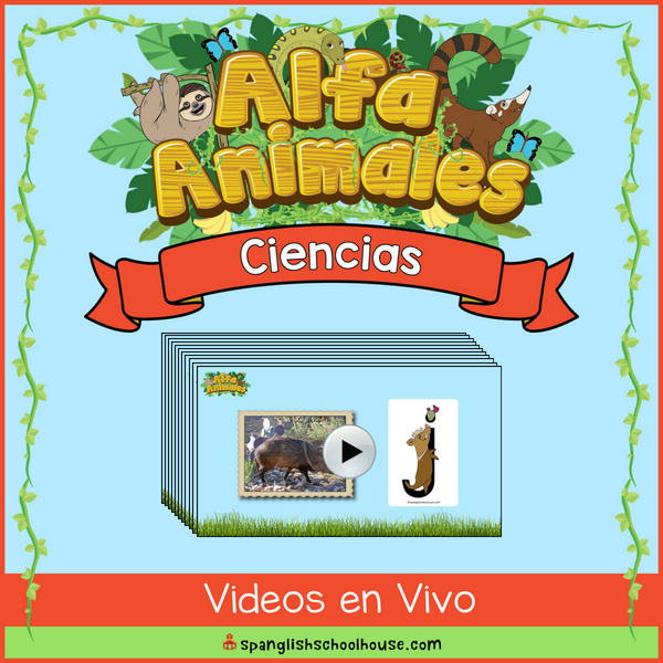 Alfa Animales Ciencias En Vivo Videos integrate science and language arts as you see each Alfa Animal in it's habitat!