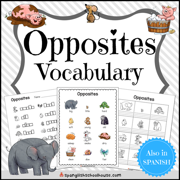 Opposite Words Vocabulary